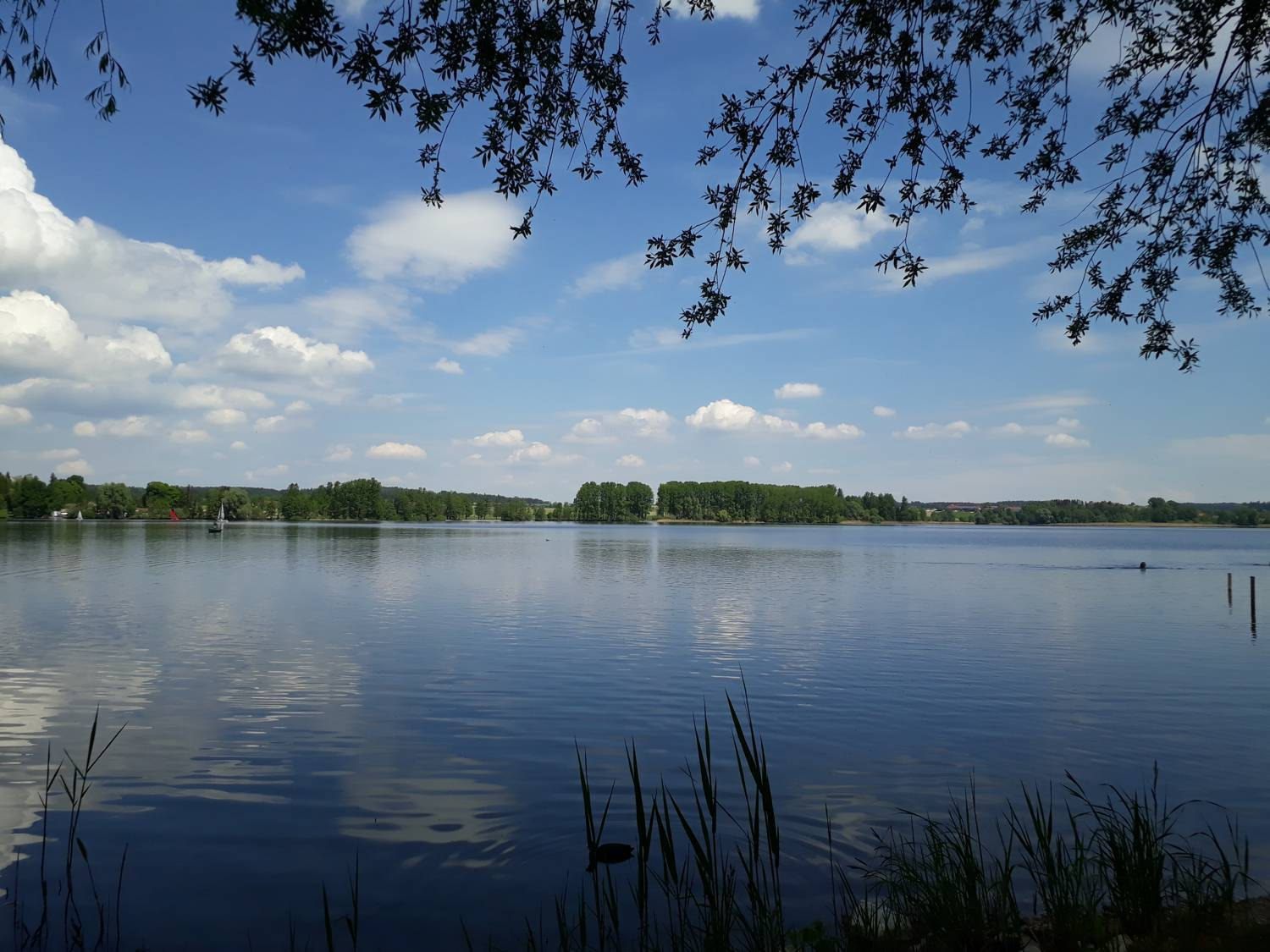 Morgenruhe am Waginger See