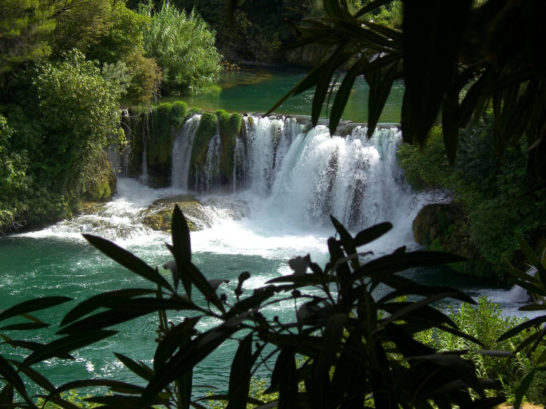 Wasser und Flora im Krka Nationalpark.