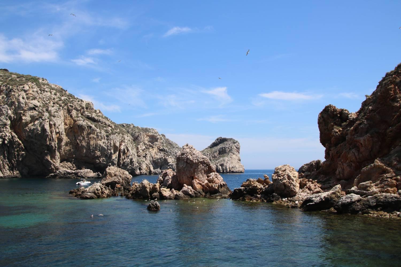 Ein Naturparadies vor der Küste Illes Medes.